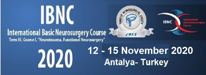international basic neurosurgery course 2020