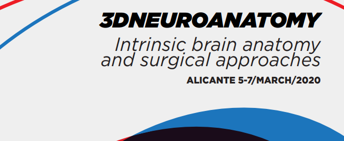 3D Neuroanatomy & Neurosurgical Approaches Course
