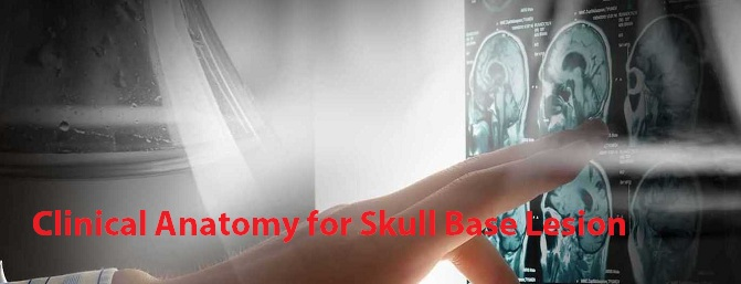 Skull base anatomy course 2020