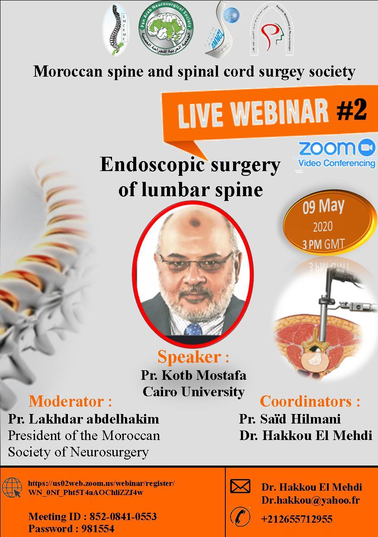 Endoscopic Surgery of Lumbar Spine
