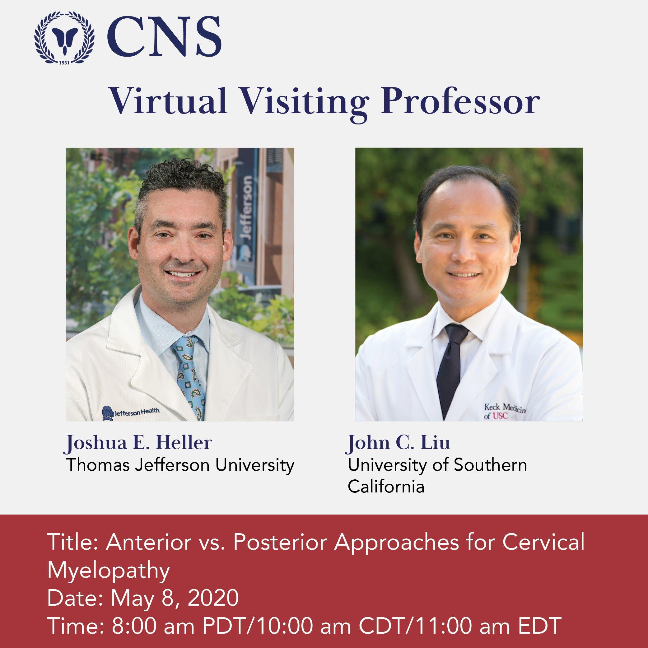 Virtual Visiting Professor
