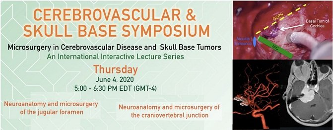 Cerebrovascular & Skull Base Symposium Week 3